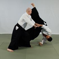 Firma Aikido